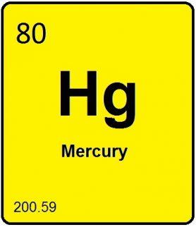 Is Mercury Hurting Your Brain?